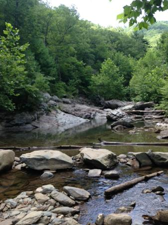 The Inn at Sugar Hollow Farm : Swimming hole along the Moorman's River Trail