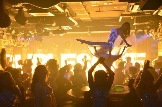 SHOW - Picture of Burlesque Tokyo, Roppongi - Tripadvisor