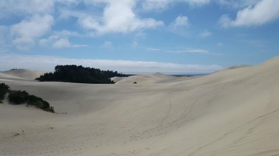 Florence, OR: amazing views!