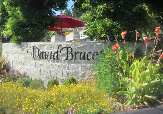 David Bruce Winery, Los Gatos, Ca