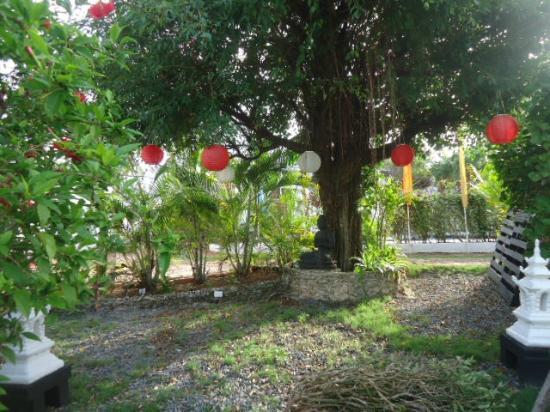 Buddha Villa : alrededores