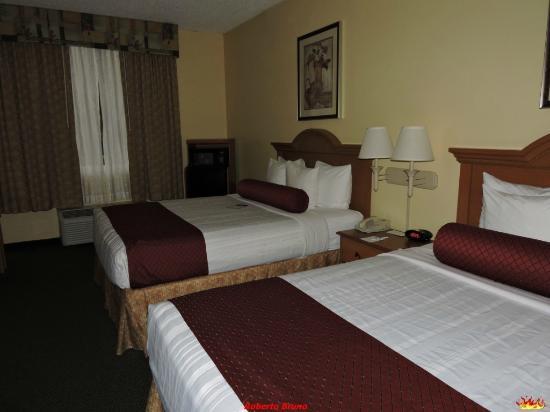 BEST WESTERN Fort Myers Inn & Suites: Camera