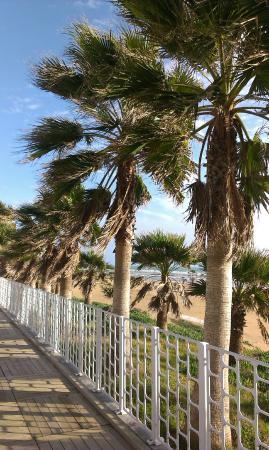 Seher Resort & Spa: promenada niedaleko hotelu Seher