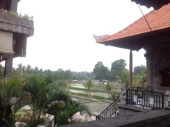 Bali Moon: Uitzicht