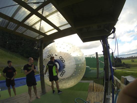OGO Rotorua : OGO