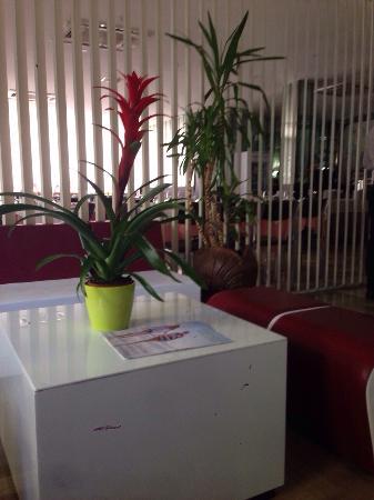 Hotel Trocadero: photo1.jpg