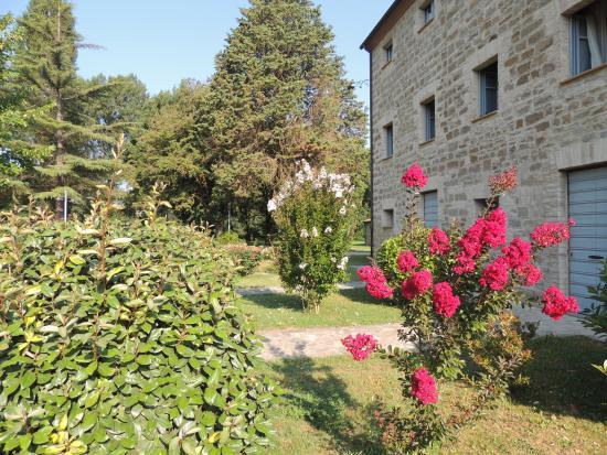 Borgo Le Terre Del Verde: Parte struttura