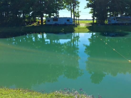 Silver Springs, NY: Great RV Park
