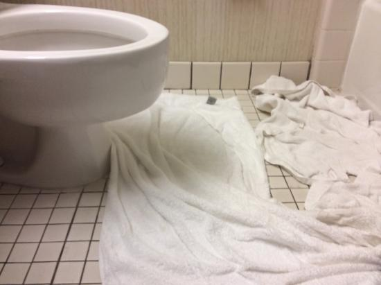 Quality Inn & Suites: We used our towels to mop up the flood.