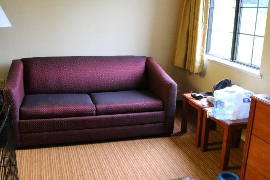 MainStay Suites of Lancaster County: Additional seating and sofabed