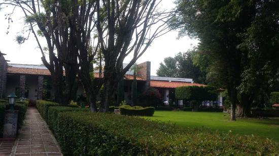 Mision San Gil: Jardines