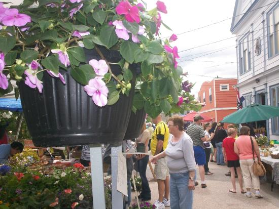 Annapolis Royal Farmers' and Traders' Market: always lots of colour at the market