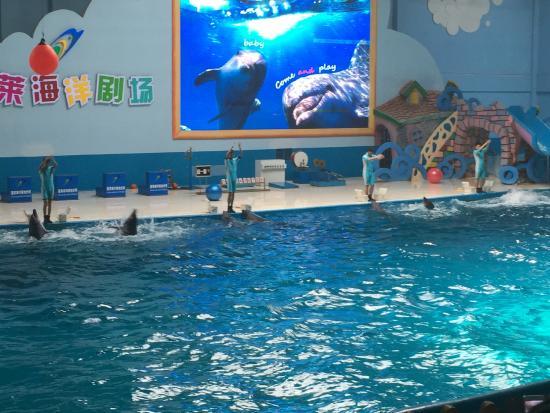 Ocean Aquarium of Penglai