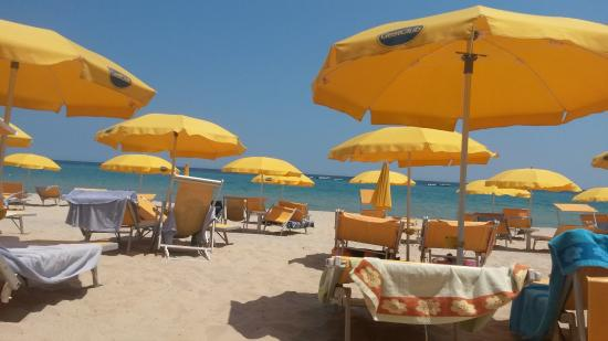 Фри Бич Клуб - Изображение The Free Beach Club, Коста