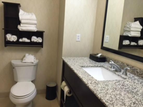 Hampton Inn Seneca Falls: Bathroom