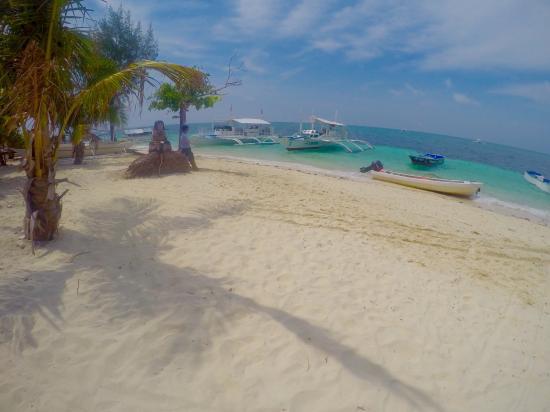 Hippocampus Beach Resort: photo1.jpg