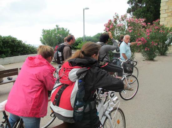 Elio Sport - Vendita Noleggio Biciclette: Elio´s bikes - fast neu