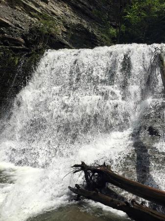 Sugar Creek Glen Campground: 1 of the waterfalls
