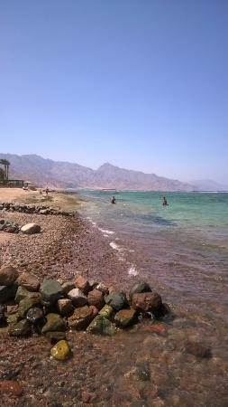 El Primo Hotel Dahab: Sinai and Gulf of Acaba