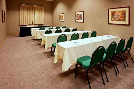 Country Inn & Suites By Carlson, Austin North (Pflugerville): Pfluger Meeting Room