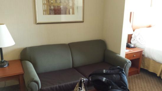 Bay City, MI: Fold out sofa bed