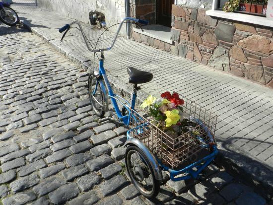 Barrio Historico: Bike com flores