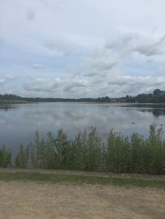 Søen ved Gentofte hotel