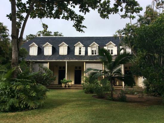 Picture of eureka house moka tripadvisor for Eureka house