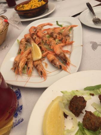 Ortigas de mar fritas y gambas a la plancha picture of Cocinar ortigas de mar