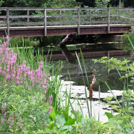 Morristown, Nueva Jersey: Kitchel Lake in Loantaka