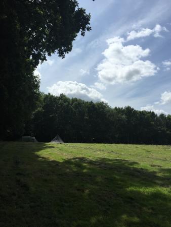 Bedgebury Camping Image