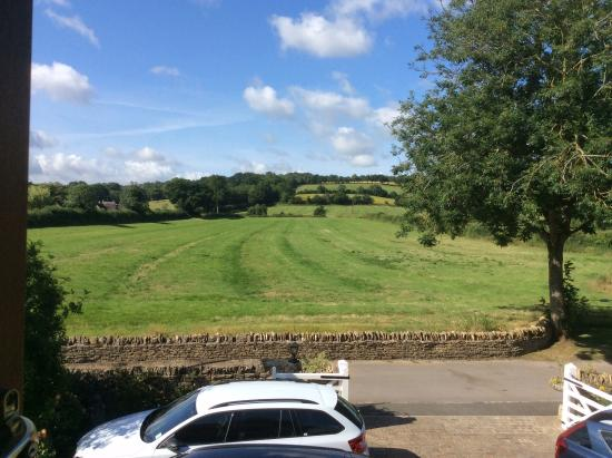 Meadow Rise Guest House: Perfect view - especially if you like rabbits!