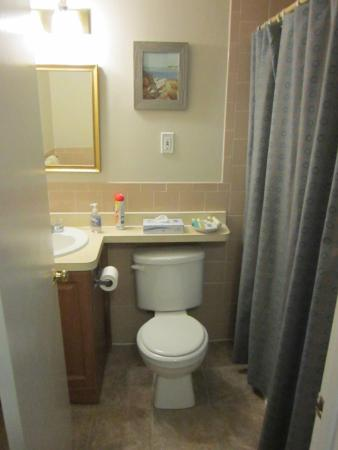 Pier 7 Condominiums: View of one of the bathrooms