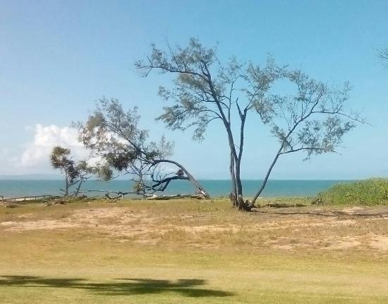Forrest Beach Hotel & Caravan Park