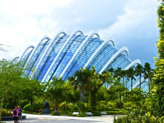 gardens by the bay exterior view of the flower dome
