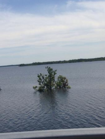 Mississinewa Lake Image