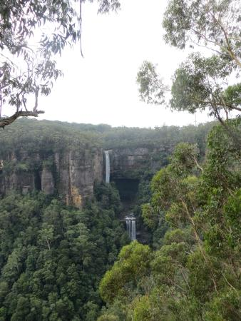 Robertson, Australia: The falls from a distance