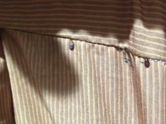 Pleasant Hill Inn : Bed Bugs