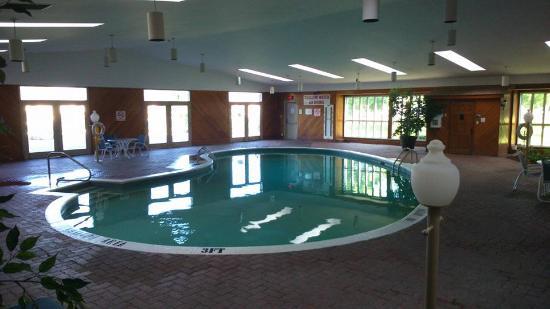 Festival Inn: pool area
