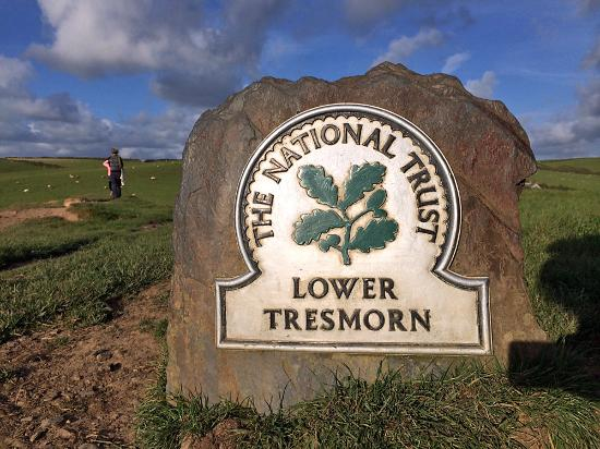 Lower Tresmorn Farm: Beautfiul fields are all around for great walks.