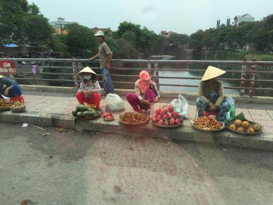 Selective Tours : From Hanoi through to Hoi An