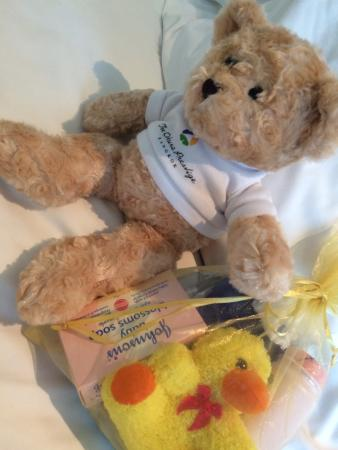 Okura Prestige teddy for the kids - Picture of The Okura Prestige ... d4b8c4fb49f98