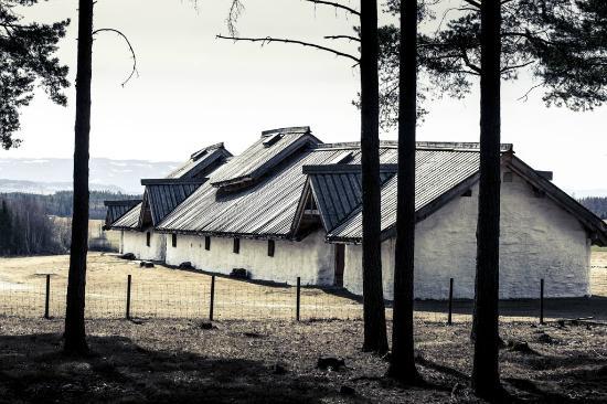 Honefoss, Noorwegen: Langhuset på Veien