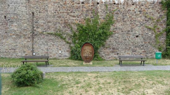Rheingau Wine Museum Broemserburg Castle : 博物館