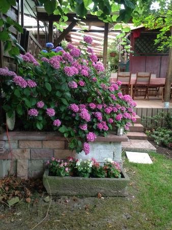 La Corderie : Un aspect du jardin