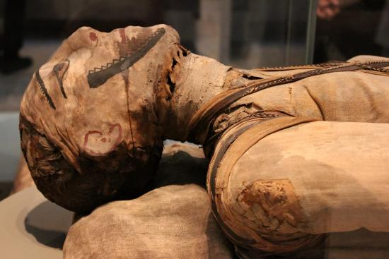 Mummy Ancient Egypt British Museum Picture Of
