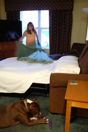 Homewood Suites Holyoke-Springfield/North: Sofa Bed in Living Room