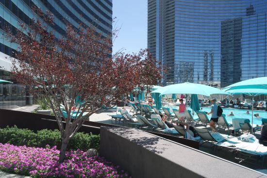 Las Vegas, NV: Hotel & Motel Planning Guide