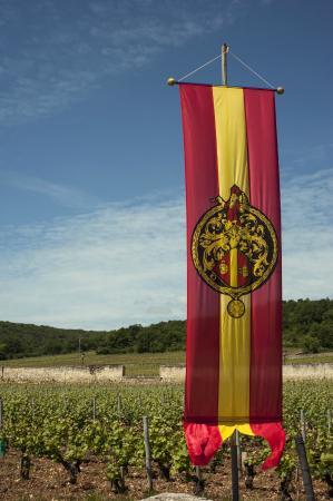Burgundia Tour: Esos paisajes!!!