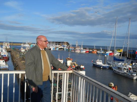 Oakwell Guest House: me looking around the harbour